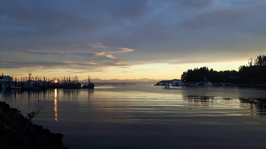 Port Hardy, แคนาดา: A calm morning in Hardy Bay