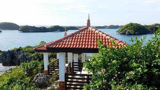 Giant clamps picture of hundred islands resort hotel for Giant city lodge cabins