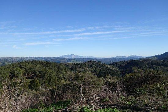 Berkeley, Californië: At the Wildcat Peak overlooking the Mount Diablo in the distance...
