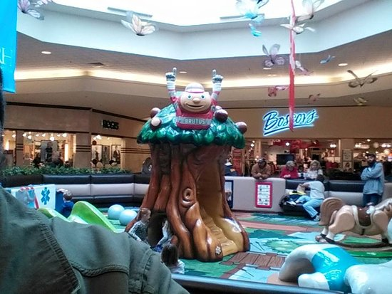 Saint Clairsville, OH: Brutus Buckeye Tree in the Kids Play Area!
