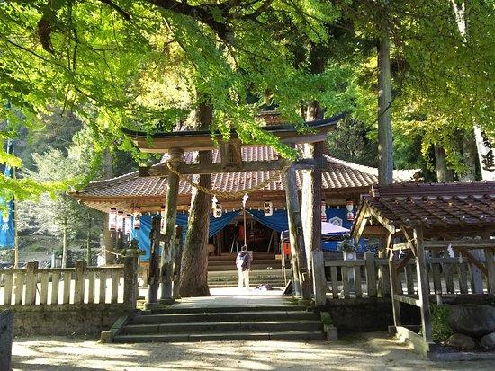 Tsutsuga no Oicho