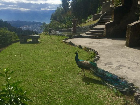 Hacienda Rumiloma: photo0.jpg