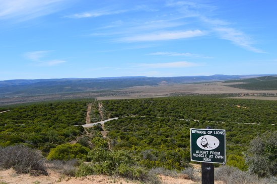 Addo Elephant National Park, Sudáfrica: Viewpoints