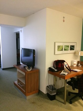 SpringHill Suites Williamsburg: Television Viewing Area