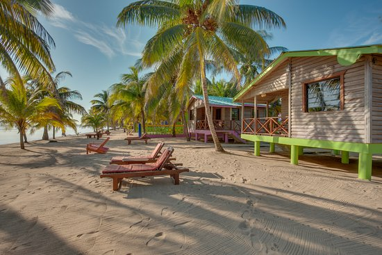 Our ocean front cabins offering the best view of the sea (231575821)