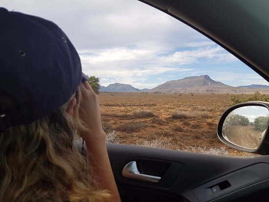 Eastern Cape, South Africa: Some Binoculars are a good idea