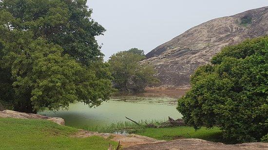 Tissamaharama, Σρι Λάνκα: Yala National Park
