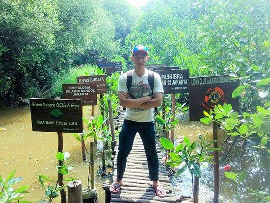 Pose Picture Of Wisata Alam Mangrove Pantai Indah Kapuk Jakarta