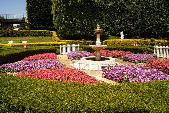Pokolbin, Australia: Parterre garden
