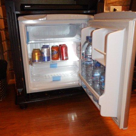 Awesome Bar Refrigerator with Freezer