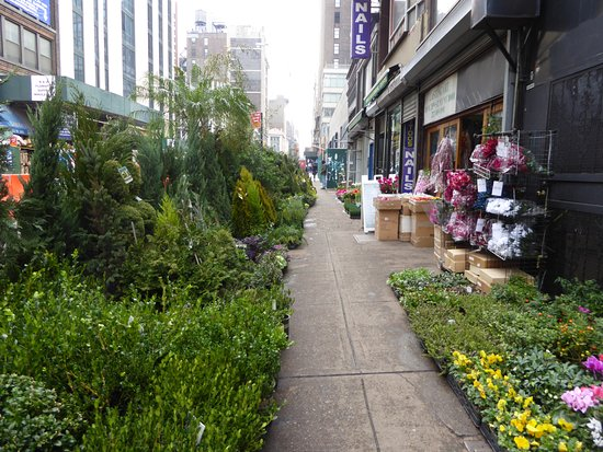 Hilton Garden Inn New York/Manhattan Chelsea: 28th Street   Flower District