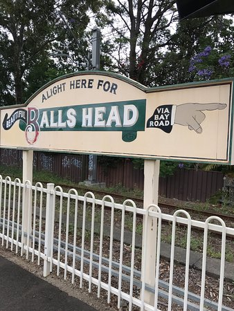 Balls Head Reserve