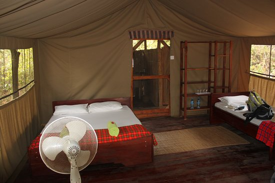 Selous Great Water Lodge: Inside the tent