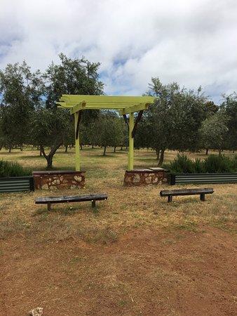 Cowaramup, Australia: photo4.jpg