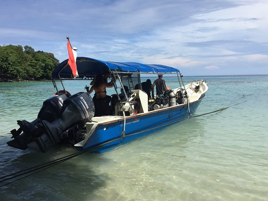 Pulau Weh, Indonesia: Well-powered diving boats
