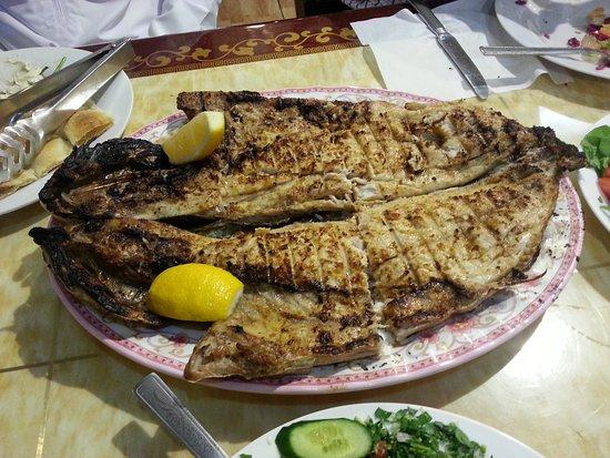 turkish diwan restaurant pesce alla griglia