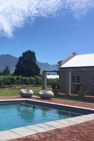 Saronsberg Vineyard Cottages: Swimming pool
