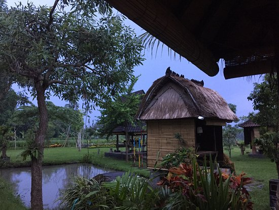 Warung Uma Abian照片