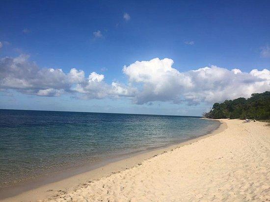 Bilde fra Green Island Resort