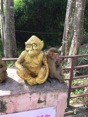 Πουκέτ Τάουν, Ταϊλάνδη: photo3.jpg