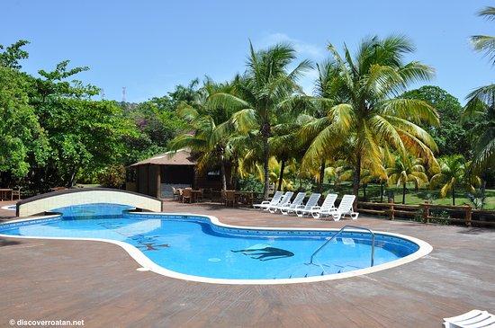 Coxen Hole, Honduras : Poolside at Gumbalimba Park - Roatan, Honduras