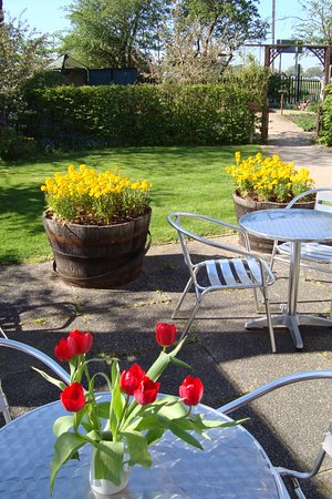 Warwick, UK: From the centre to the Children's garden