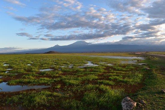 Amboseli National Park, Kenia: Views to Kilimanjaro