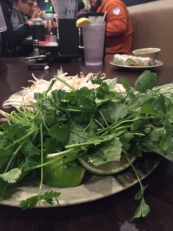 Sugar Land, TX: Fresh veggies for Pho