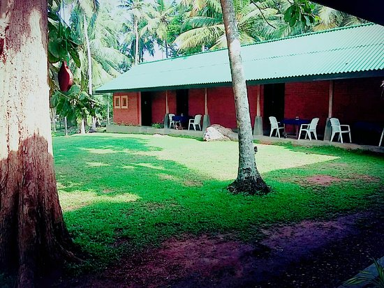 Jungle Beach Hostel & Campsite