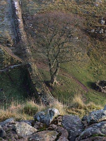 Northumberland National Park, UK: photo0.jpg