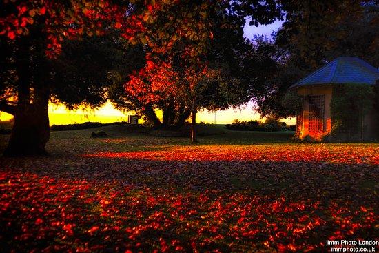Bradford-on-Avon, UK: Front garden