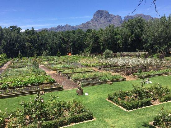Franschhoek, Güney Afrika: photo9.jpg