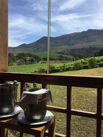 Constantia, Νότια Αφρική: photo1.jpg