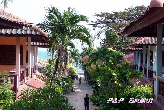 P&P Samui Resort: Výhled z terasy