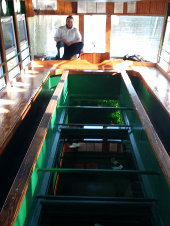Silver Springs, FL: glass bottom boat with tips