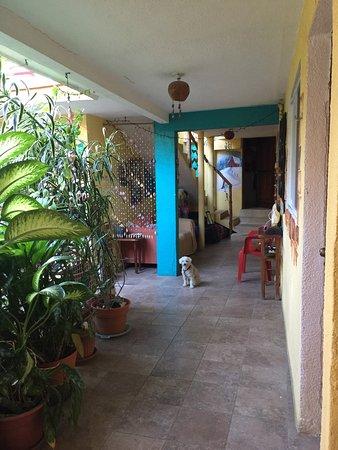 Hotel Las Palmas: photo3.jpg