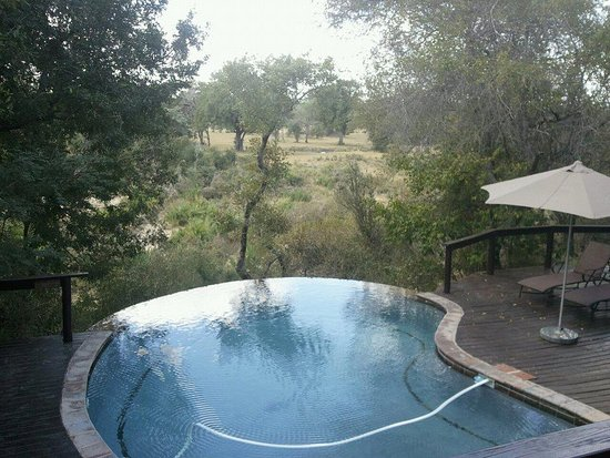 Elephant Plains Game Lodge
