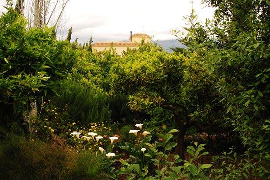 Jardin botanico la almunya del sur el ejido spanien for Jardin botanico almeria