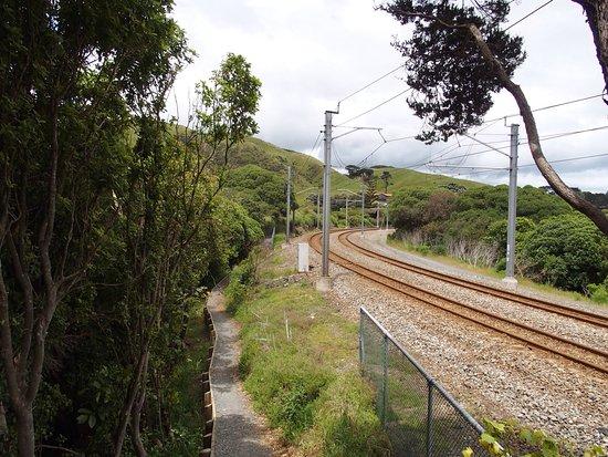 Paekakariki, New Zealand: photo9.jpg