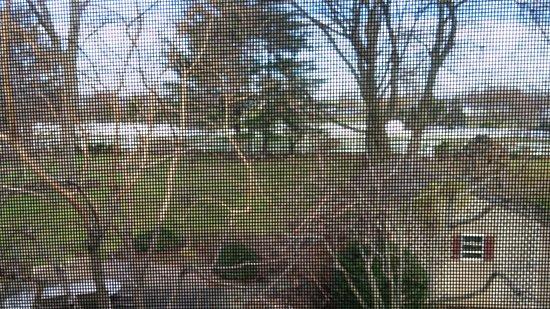 Smoketown, PA: Back Yard View