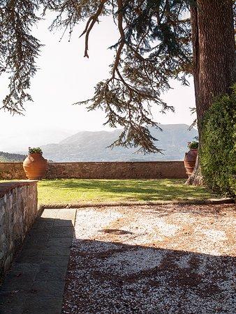 Foto de Villa Borbone Lucca