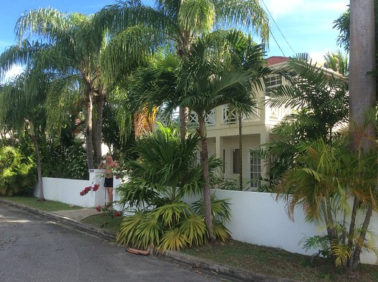 Speightstown, Barbados: Lovely quiet getaway !