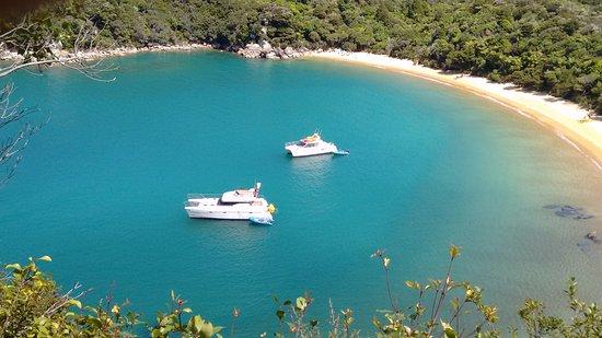 Abel Tasman National Park, Nueva Zelanda: Abel Tasman Charters Te Pukatea Bay view