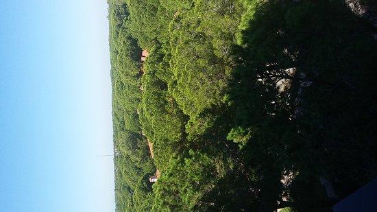 Xanadu Resort Hotel: Yeşil doğal