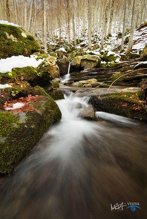 Lizzano in Belvedere, Itália: Cascate del Dardagna