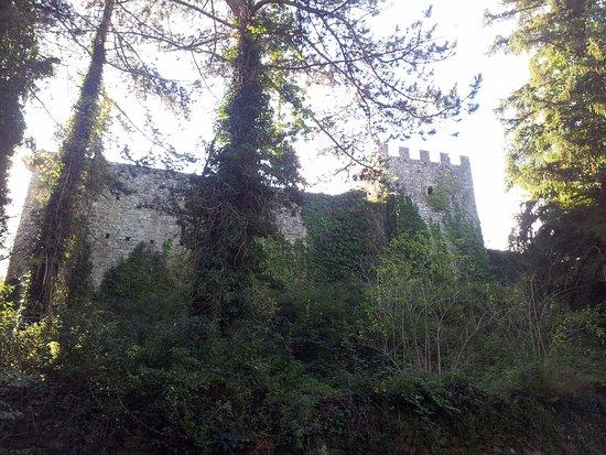 Montieri, อิตาลี: mura del castello di Fosini