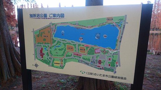 Saitama, Japonia: DSC_0394_large.jpg