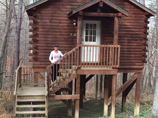 Blue Rose Cabins Photo