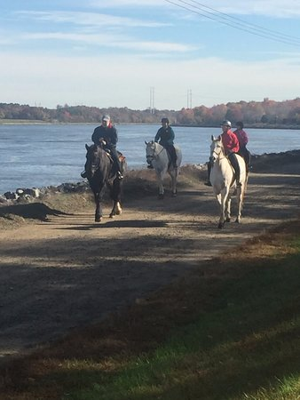 Chesapeake City, Μέριλαντ: We're also in the middle of Maryland Horse Country