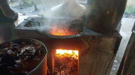 Can Tho, Vietnam : Sau Hoai's Rice Noodle Factory